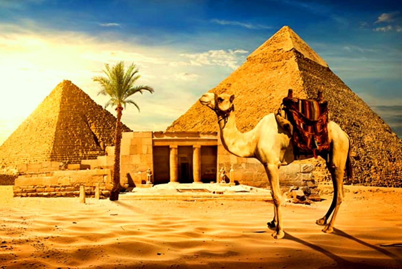 президенты Египта и России договорились