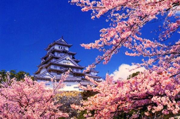 Стоит посетить! Япония